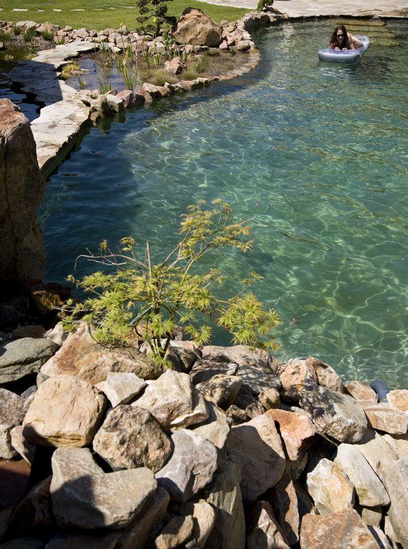 Zwemvijver zwemvijvers zwemvijver aanleggen for Zwemvijver filtersysteem